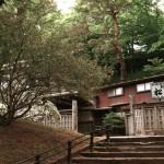 千秋公園の精霊たち